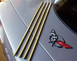 C6 Corvette Tail Light Seals
