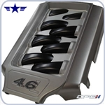 2005 2010 Mustang GT 4.6L Plenum Cover