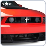 2012 2013 Ford Mustang BOSS Grille