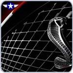 2005 2006 2007 2008 2009 Mustang GT500 Upper Front Grille