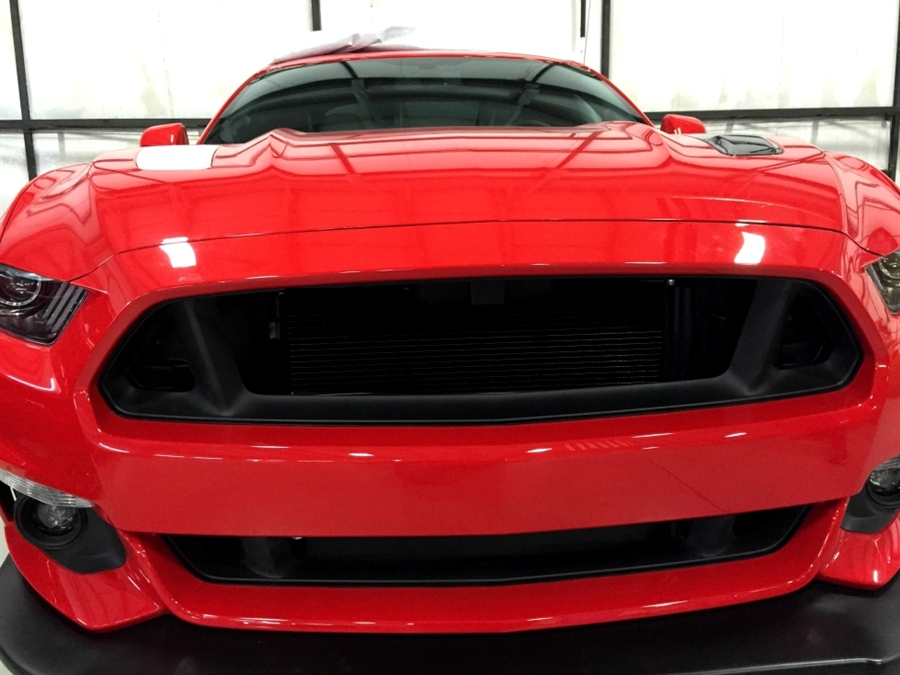 2015 Ford Mustang Grilles Delete Kit